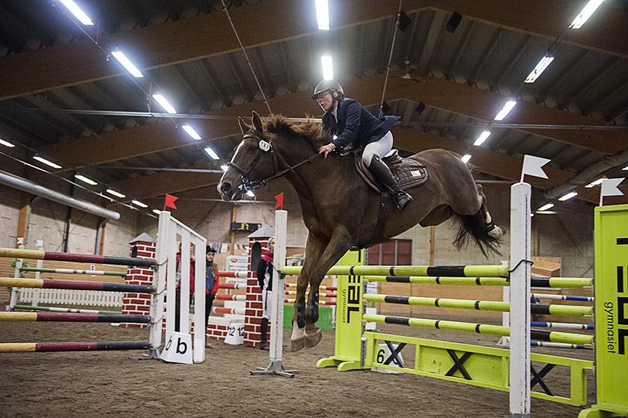 Hästhoppning i Timrå.